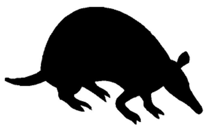 "Armadillo Window Sticker Decal 6""h"