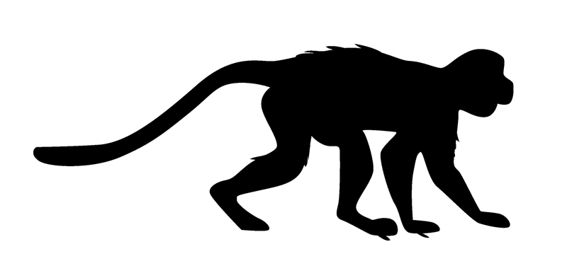"Monkey Window Sticker Decal 6""h"